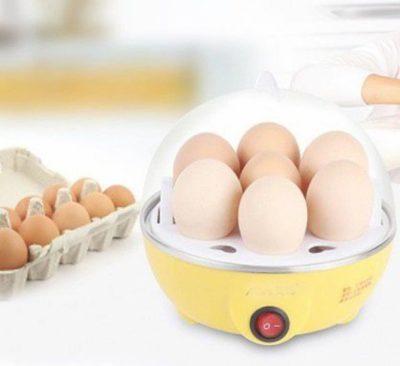 10 Best Egg Boilers In India 11